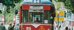 Wilde Zicke - Naumburger Straßenbahn