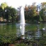 Bad Kösen, Ententeich mit Springbrunnen im Kurpark