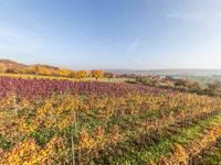 Ortsteil Eulau Ansicht 7 (alle Bilder (c): Lumen Pictura)